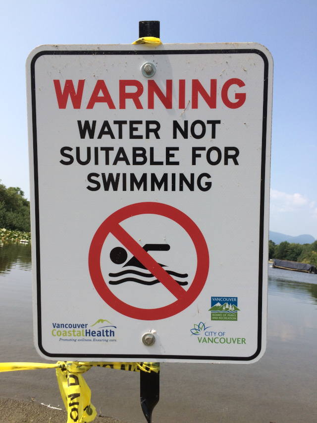 A City of Vancouver and Vancouver Coastal Health sign with the word WARNING in big red letters. It also says WATER NOT SUITABLE FOR SWIMMING in smaller black letters. It includes a symbol of a person swimming with a red circle and a line running through it.