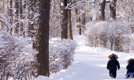 Winter 2021 Programs starting soon-Register Now